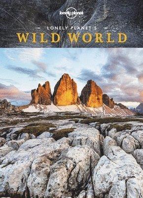 bokomslag Wild World
