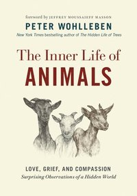 bokomslag The Inner Life of Animals: Love, Grief, and Compassion--Surprising Observations of a Hidden World