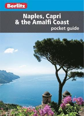 bokomslag Naples, Capri & The Amalfi Coast