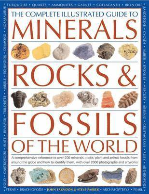 bokomslag The Complete Illustrated Guide to Minerals, Rocks &; Fossils of the World