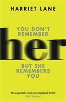 Her: A fabulously creepy thriller 1