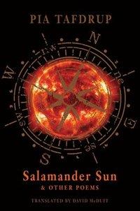 bokomslag Salamander Sun and Other Poems