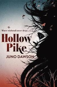 bokomslag Hollow Pike
