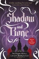bokomslag Shadow and Bone