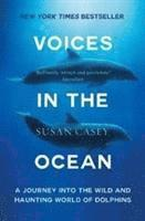 bokomslag Voices in the ocean - a journey into the wild and haunting world of dolphin