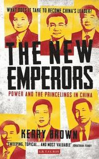 New emperors - power and the princelings in china