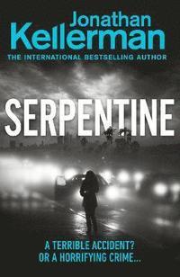 bokomslag Serpentine