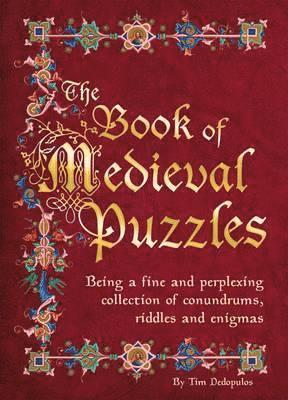 bokomslag Medieval Puzzles