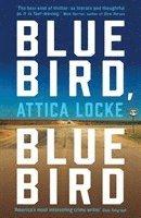 bokomslag Bluebird, Bluebird