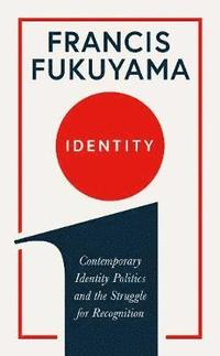 bokomslag Identity: Contemporary Identity Politics and the Struggle for Recognition