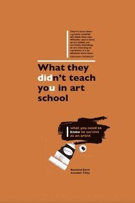 bokomslag What They Didn't Teach You in Art School