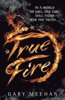 bokomslag True trilogy: true fire - book 1