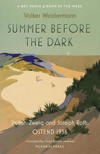 bokomslag Summer Before the Dark