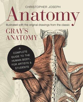 bokomslag Anatomy