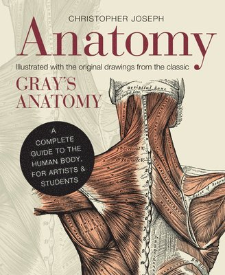 bokomslag Anatomy: A Complete Guide to the Human Body, for Artists & Students