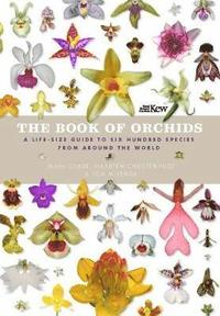 bokomslag The Book of Orchids: A Life-Size Guide to Six Hundred Species from Around the World