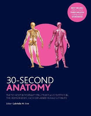 bokomslag 30-second anatomy - the 50 most important structures and systems in the hum