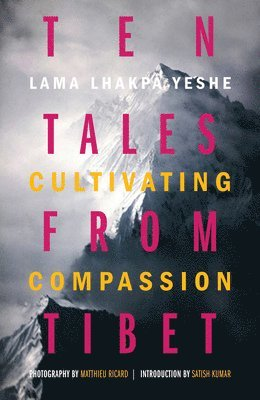 bokomslag Ten tales from tibet - cultivating compassion
