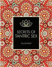 bokomslag Secrets of tantric sex