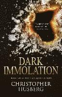 bokomslag Dark Immolation: Book two of the Chaos Queen Quintet