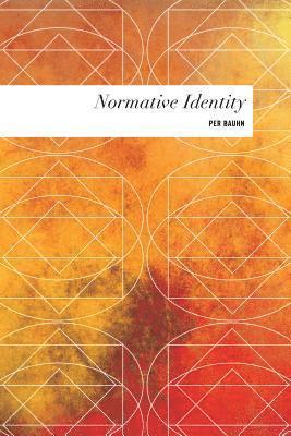 bokomslag Normative Identity