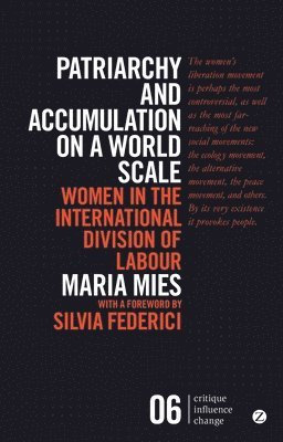 bokomslag Patriarchy and Accumulation on a World Scale: Women in the International Division of Labour