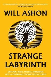 bokomslag Strange Labyrinth