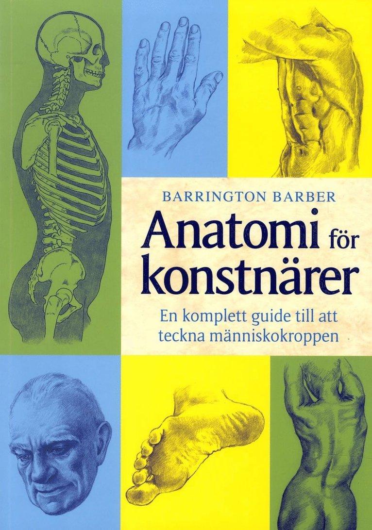 Anatomi för konstnärer : en komplett guide till att teckna människokroppen 1