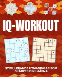 bokomslag IQ Workout