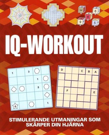 bokomslag IQ Workout
