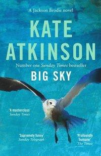 bokomslag Big Sky