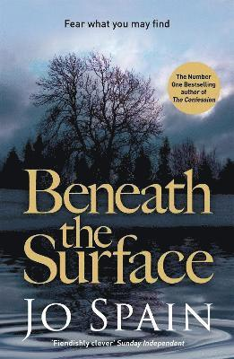 bokomslag Beneath the surface - the critically acclaimed mystery from the bestselling