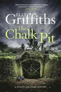 bokomslag The Chalk Pit