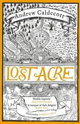 bokomslag Lost Acre: Rotherweird Book III