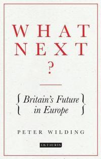 bokomslag What Next?: Britain's Future in Europe