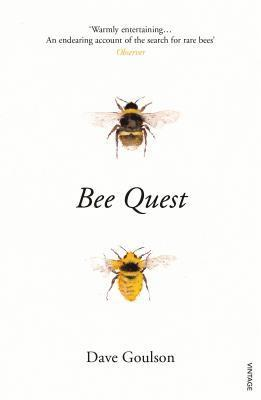 bokomslag Bee Quest