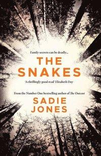 bokomslag The Snakes