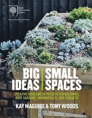 bokomslag Rhs big ideas, small spaces - creative ideas and 30 projects for balconies,