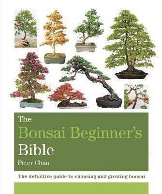 bokomslag The Bonsai Beginner's Bible: The definitive guide to choosing and growing bonsai