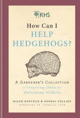 bokomslag RHS How Can I Help Hedgehogs?