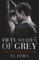 bokomslag Fifty Shades of Grey FTI