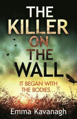 bokomslag Killer on the wall