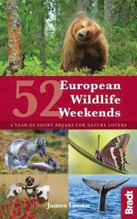bokomslag 52 European Wildlife Weekends: A year of short breaks for nature lovers