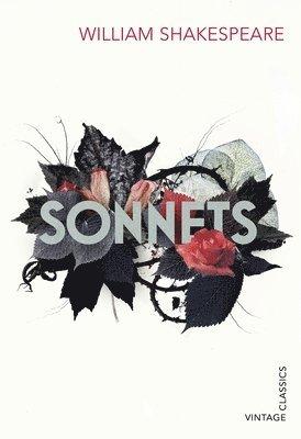 bokomslag Sonnets