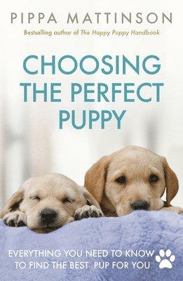 bokomslag Choosing the perfect puppy