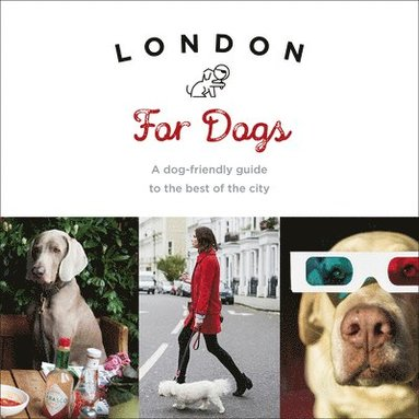 bokomslag London for dogs - a dog-friendly guide to the best of the city