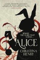 bokomslag Alice