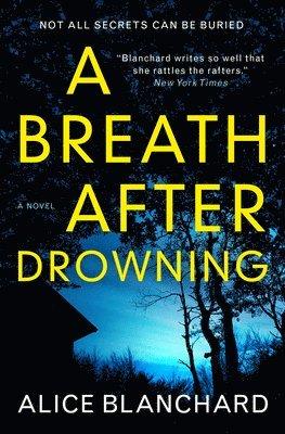 bokomslag A Breath After Drowning