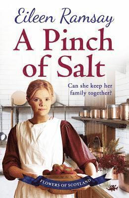 bokomslag Pinch of salt