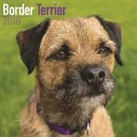 bokomslag Border terrier calendar 2018